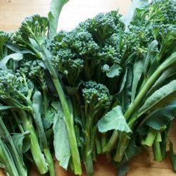 Kaali, parsakaali, Brassica oleracea Italica-Ryhmä