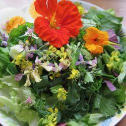 kukkasalaatti