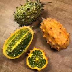Kiwano, kivakurkku, hyytelömeloni, Cucumis metuliferus